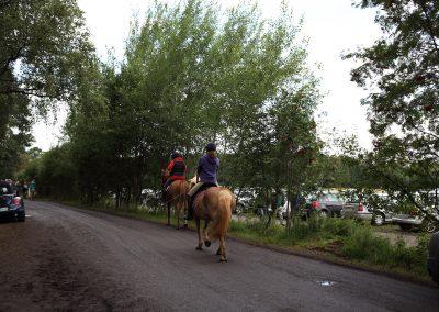 Pferde satteln